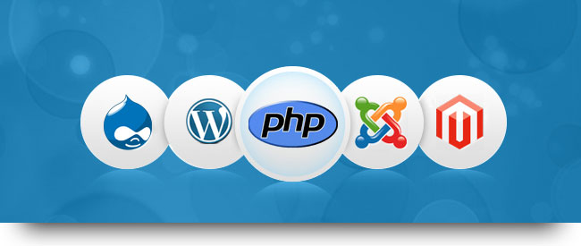 PHP Development Company India | Leo IT Hub